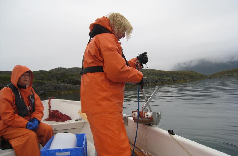 Forskaren Ingela Dahllöf drar upp sedimenthuggaren med prov från havets botten. Foto: Maria Granberg