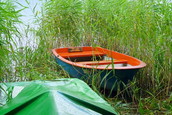 I takt med att klimatet blir varmare och blötare spolas mer organiskt kol ut i vattendrag och sjöar. Foto: mostphotos.com / LianeM