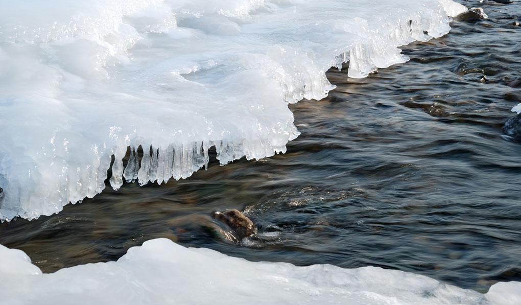 Klimatförändring kan störa viktig isdynamik i bäckar