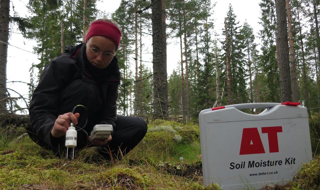 Caroline Greiser, forskarstudent vid Stockholms universitet, mäter markfuktigheten.