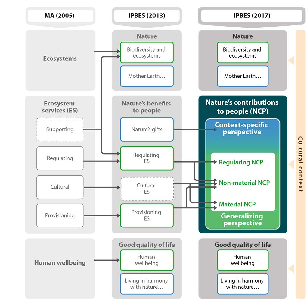 Modell för naturnyttor