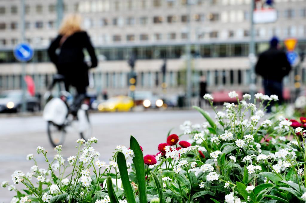 Blommor stadsmiljö