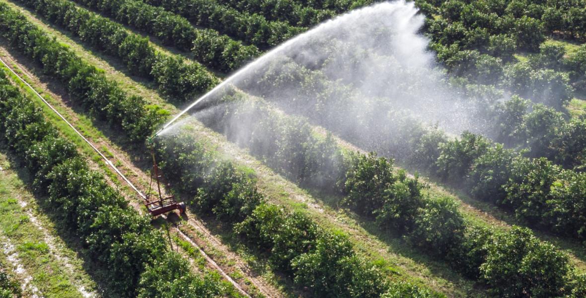Jordbruksmark