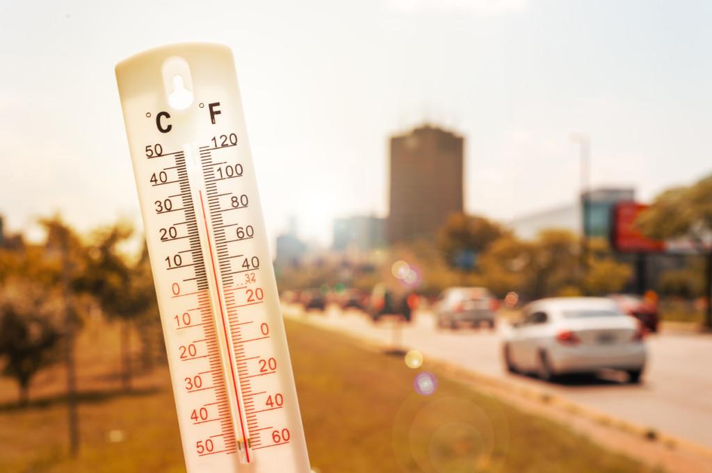 Värmetermometer vid bilväg